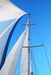 Cowes Week Corporate Solent Sailing Charter